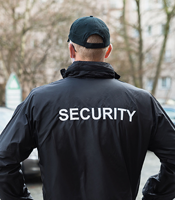 Physical Security/Executive Protection